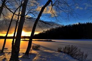 blog image -winter landscape